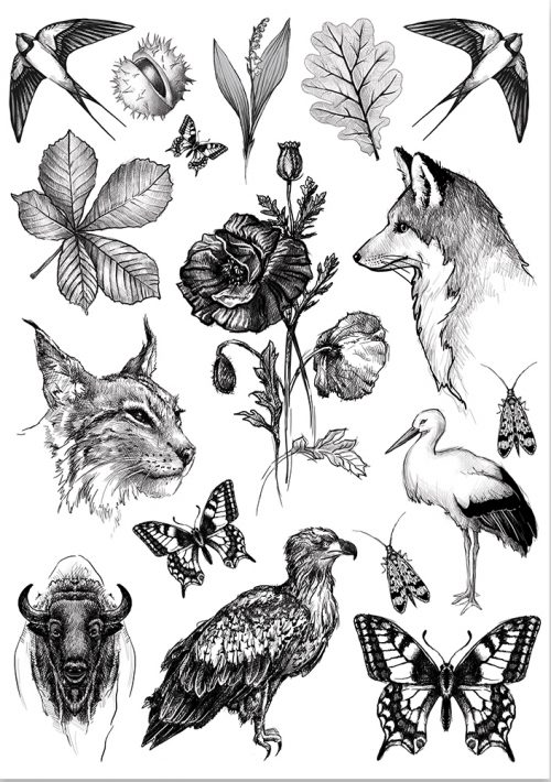 fauna-flora-tattoo
