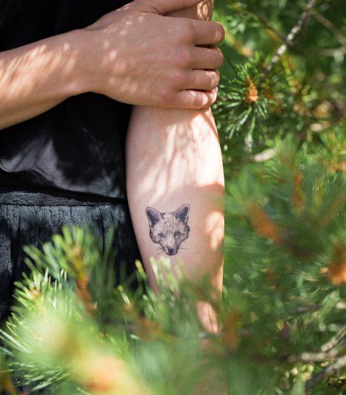 tetovejumi-daba