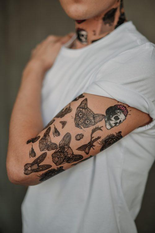 tetovejumi-zveri